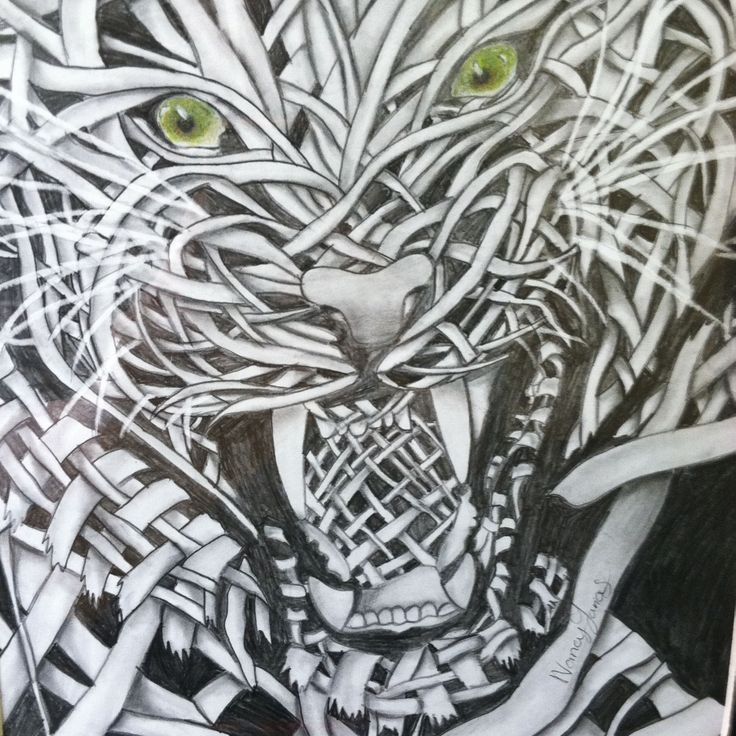 Contour Line Drawing Th Grade : Best images about th grade art projects on pinterest