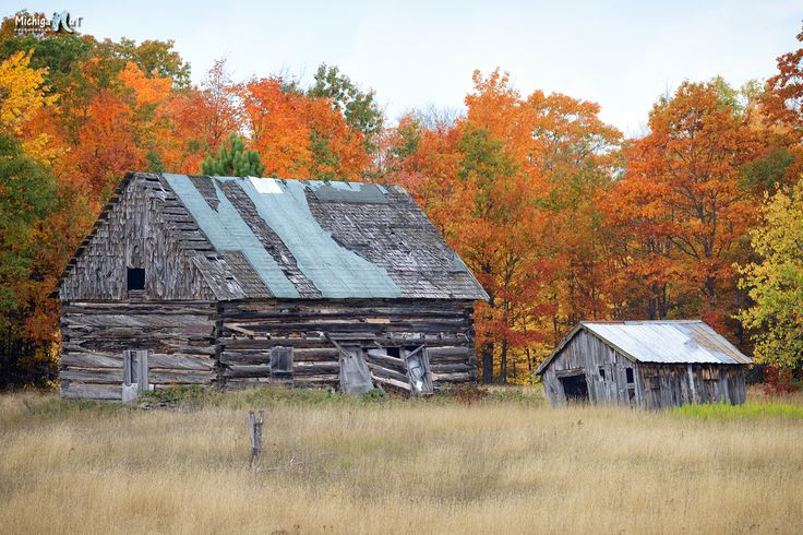 82 best images about autumn in michigan on pinterest for Hewn log cabin kits