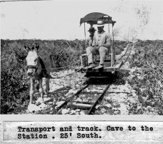 Tranvía de la Isla de Mona  Ferrocarril halado por un burrito para el  transporte de materiales de la playa al faro.  Materiales para el  faro eran llevados en un vagón desde la orilla de la playa hasta una cueva en donde se subían por una escalera y luego se transportaban en otro vagón hasta el faro.