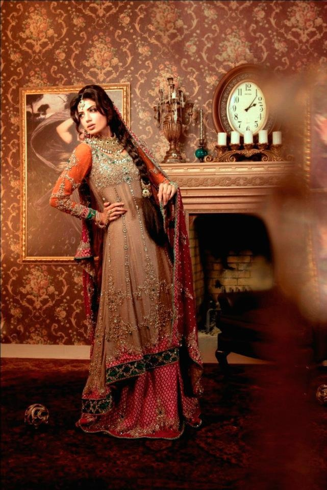 Anarkali Lengha Design -I wish I had a reason to wear Indian gowns on a daily basis. this is gorgeous.