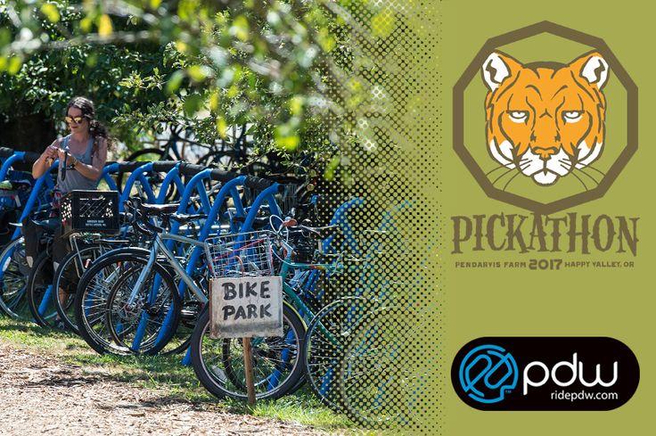 PDW x Pickathon Weekend Ticket Giveaway
