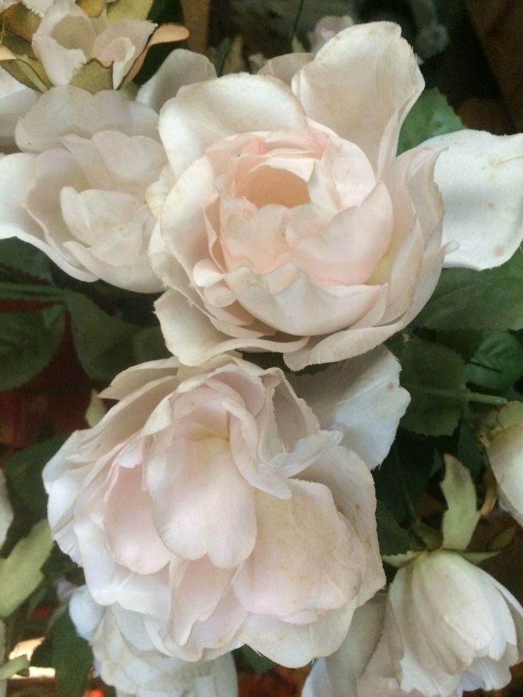Margaret Ollie Flowers