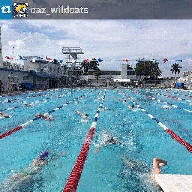 Swim And Diving Team Are Currently Practicing In Ft Lauderdale Florida At The Swimming Hall Of