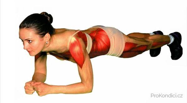 Jedno jediné cvien vylepujc celkov svalov tonus a sniujc nadvhu ProKondicicz