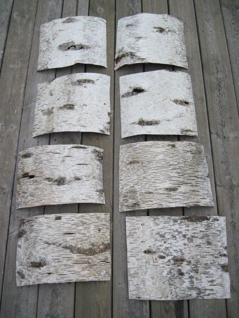 How Do I Soften Birch Bark Barking F C And