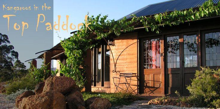 Kangaroos in the Top Paddock - Grampians Holiday Accommodation