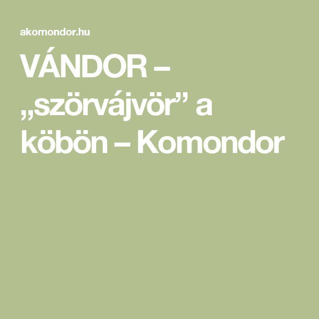 """VÁNDOR – """"szörvájvör"""" a köbön – Komondor"""
