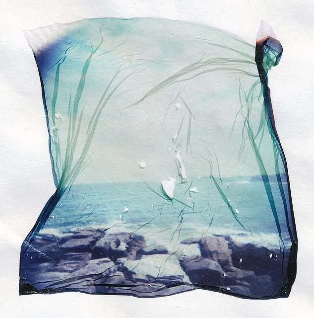 polaroid emulsion lift   # Pinterest++ for iPad #