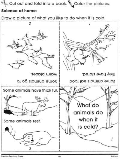 hibernation coloring pages preschool shapes - photo#24