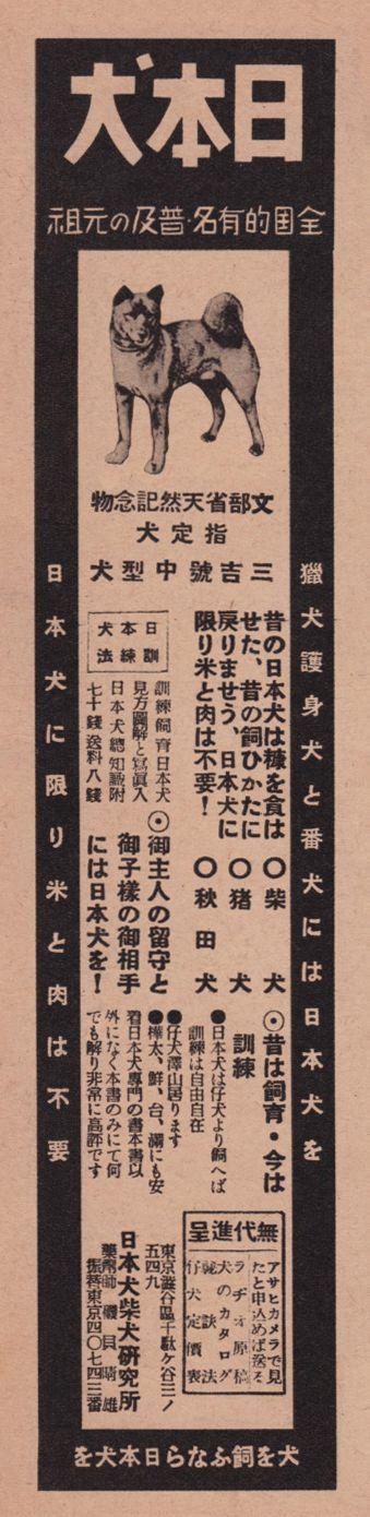 "from ""That's Eurobeat"" Japanese megablog (via 50w)"