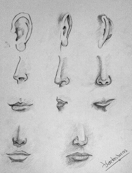 pasos para dibujar una nariz de mujer