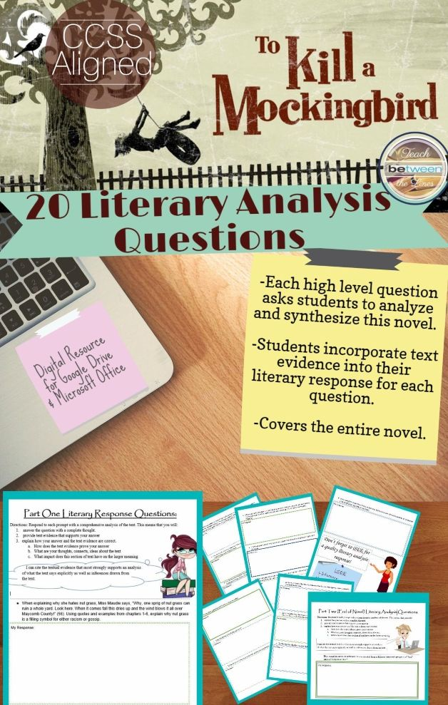 20 Literary Analysis Questions for To Kill a Mockingbird!   -Each high level question asks students to analyze and synthesize this novel.  -Students incorporate text evidence into their literary response for each question. -Each question elicits a full paragraph or essay response.  -Covers the entire novel.