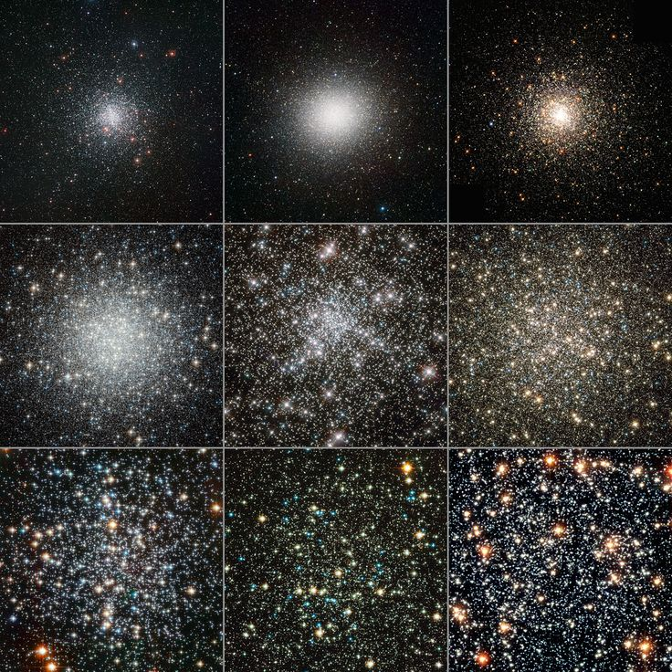 A globular cluster is a spherical collection of stars that orbits a galactic core as a satellite. Globular clusters are very tightly bound by gravity which gives them their spherical shapes. The name of this category of star cluster is derived from the Latin globulusa small sphere.