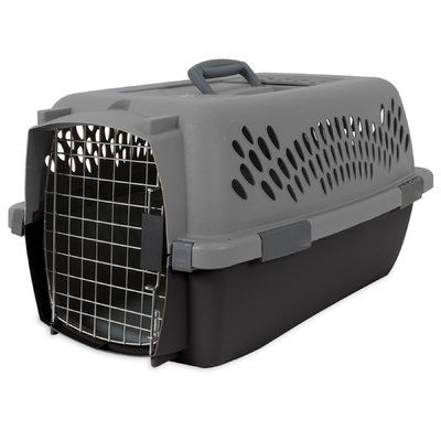 """Aspen Pet Pet Porter Traditional Pet Carrier Size: 15.2"""" H x 11.84"""" W x 23"""" L"""