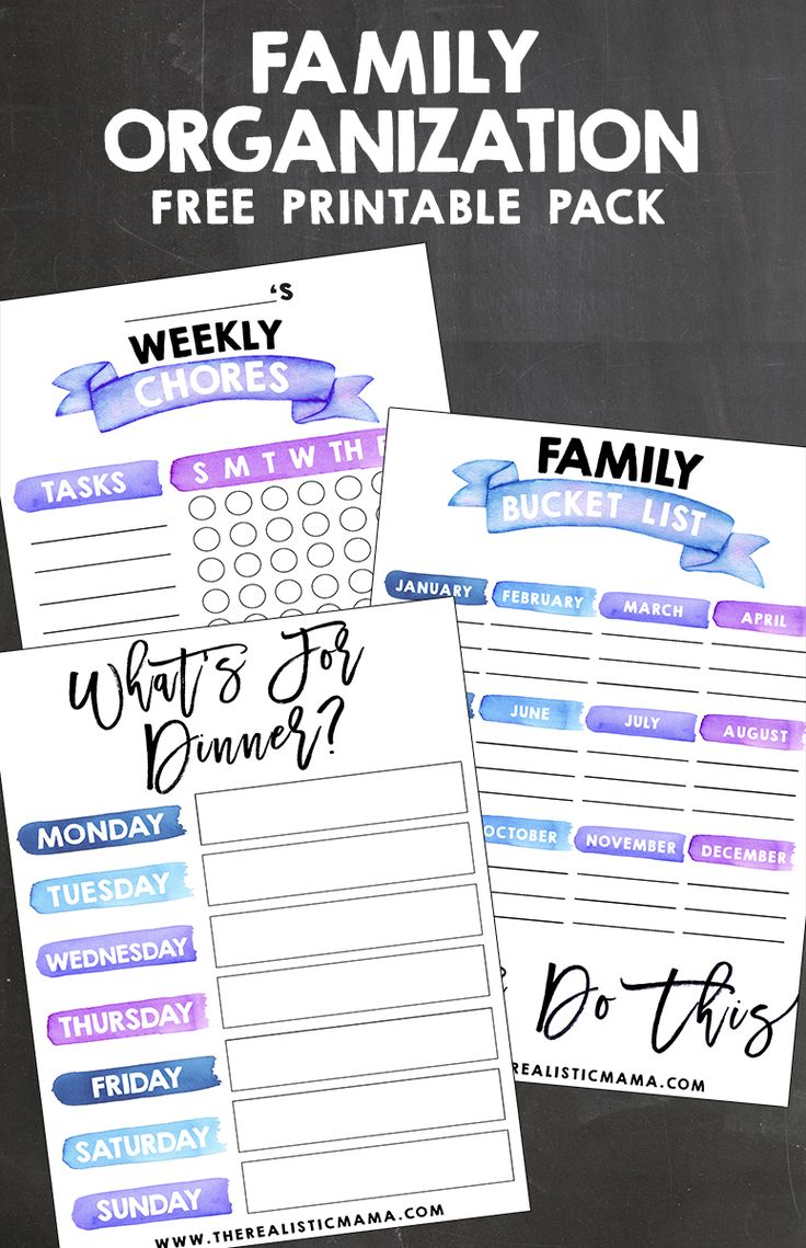 Free Family Organizer Pack: I love how these looks AND they organized my entire life! It came with monthly calendars, chore charts, family birthday list, meal planners, etc!