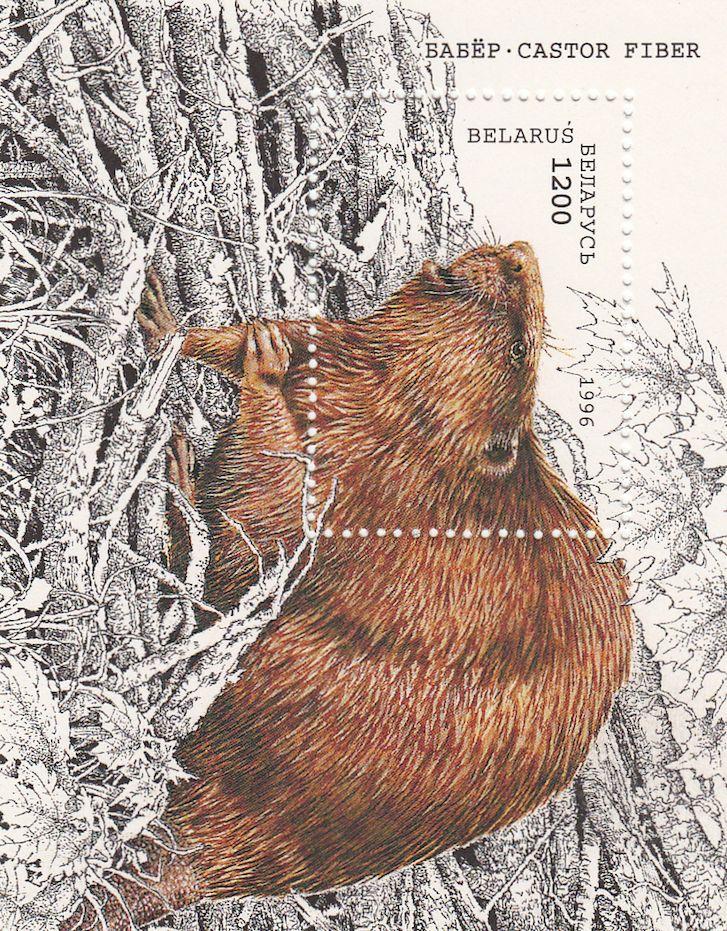Beaver stamp.