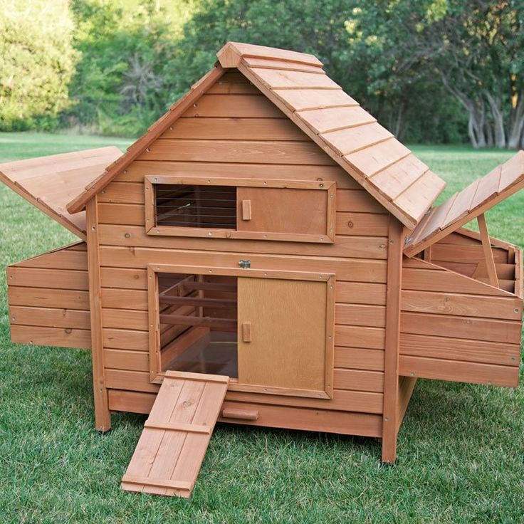 Rambler Chicken Coop with Roosting Bar | Chickens backyard ...