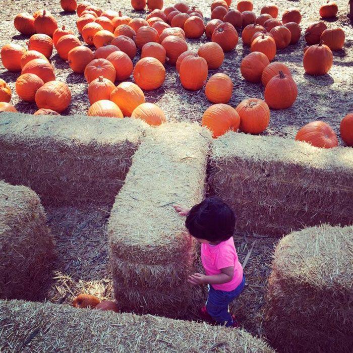 La hija de Eugenio Derbez y Alessandra Rosaldo se prepara para su primer Halloween