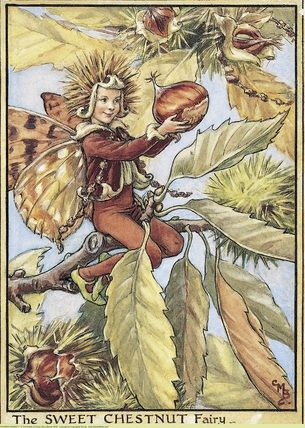Sweet Chestnut Fairy, Cicely Mary Barker:
