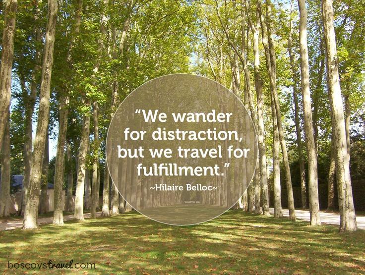 #travel #quote: Daintree Inspirations, Rainforest Roadtrip, Travel Inspiration, Truth, Forest Rainforest, Travel Quotes, Quote Forest