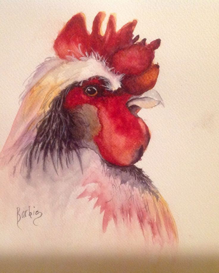 """""""Portrait of a Rooster"""" water color on cold press 140 lb. paper.  He looks so serious!   He has this macho look going on.  All the babe's in the chicken yard must be swooning..  LOL!"""