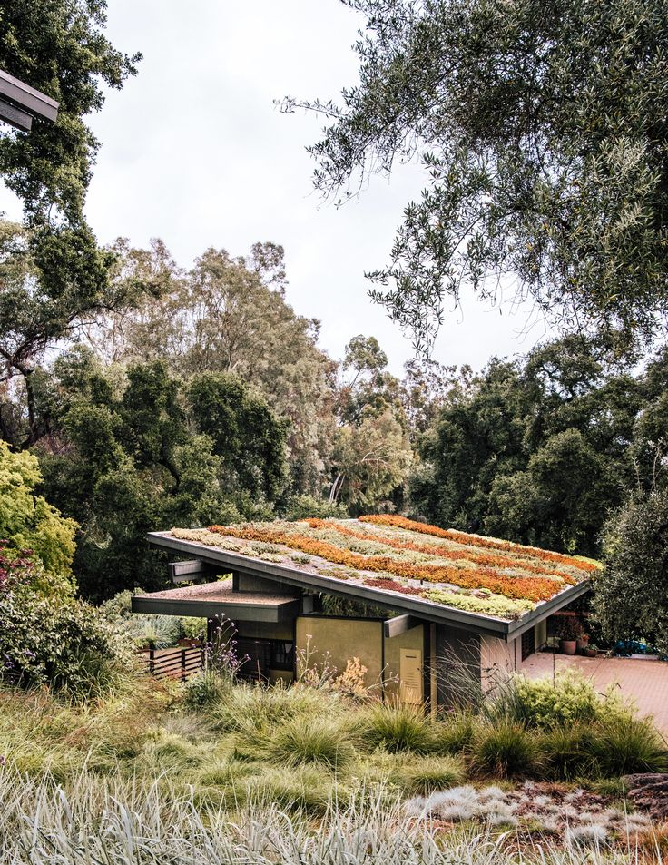 The sloped roof of Carlton's art studio grows a colorful mix of sedum species.