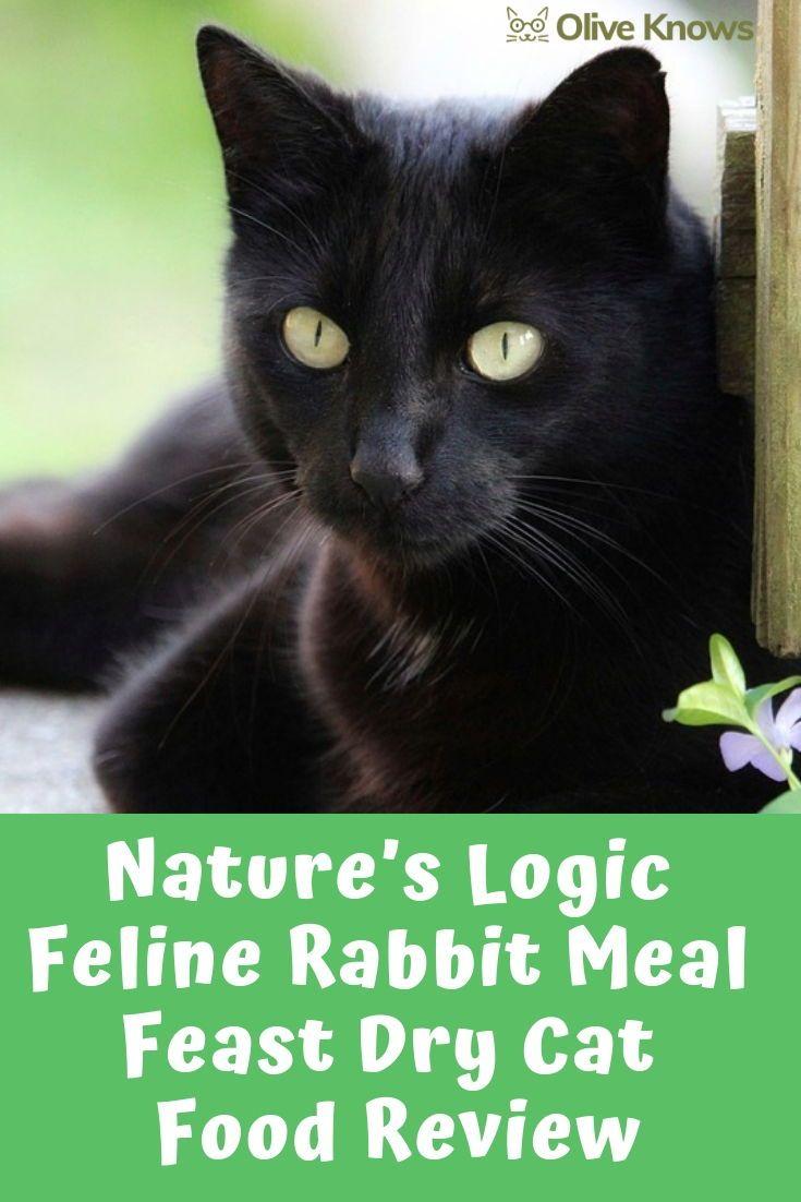 Nature S Logic Feline Rabbit Meal Feast Dry Cat Food Review