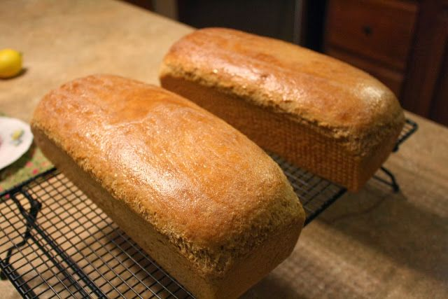 My Barefoot Farm: 1 Hour Whole Wheat Bread