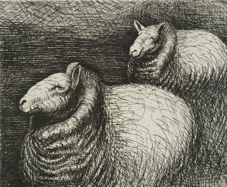 Henry Moore Sheep (biro)