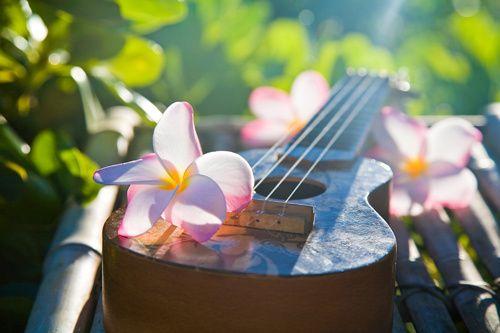ukulele and plumeria