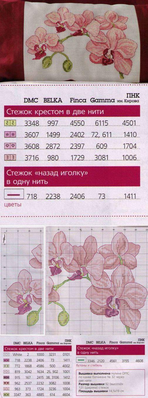 Орхидеи / Вышивка / Схемы вышивки крестом