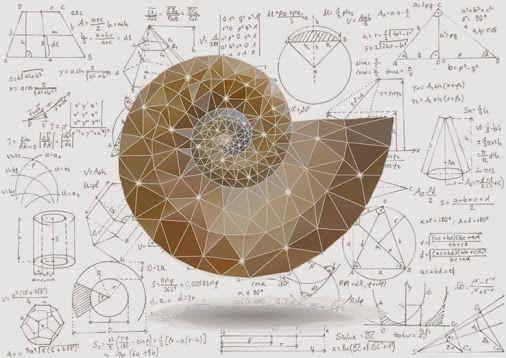 170 best Phi // Golden Section // Fibonacci images on ...