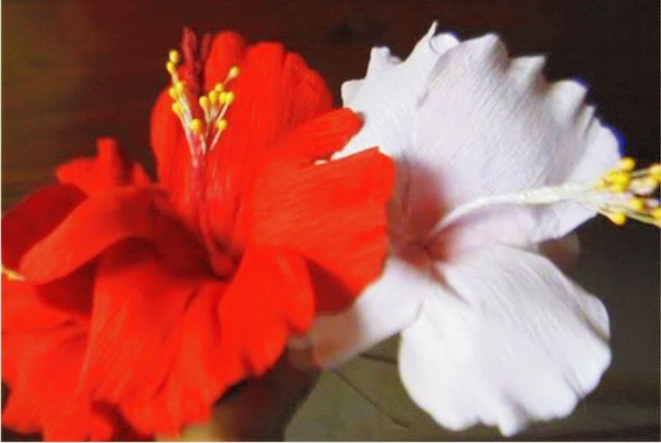 How to make paper flower - Hibiscus