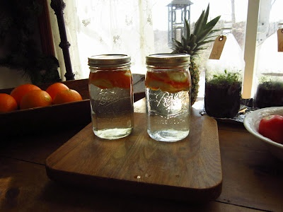 Citrus vinegar for cleaning countertops and appliances