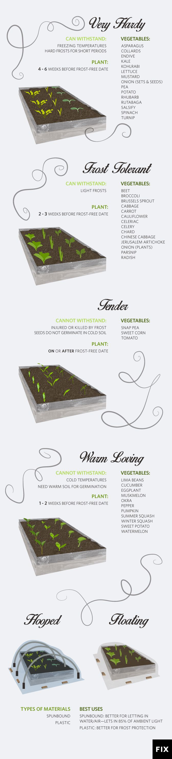 9 Steps to Harden Off Seedlings: Follow these steps to get your sprouts acclimated to the outdoors! #Gardening