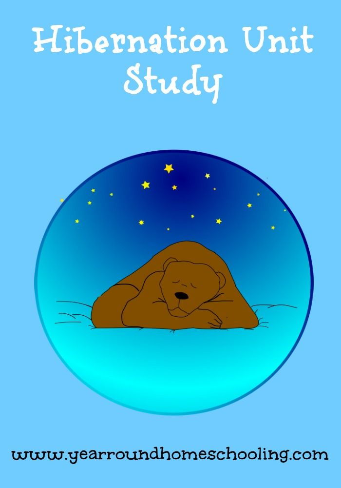 Free Hibernation Unit Study - http://www.yearroundhomeschooling.com/free-hibernation-unit-study/