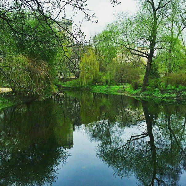 Ботанический сад   Аптекарский огород   ВКонтакте