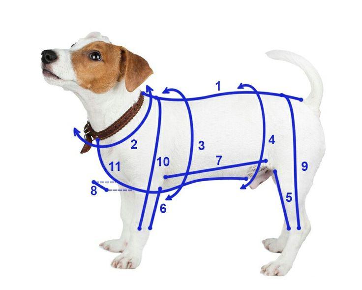 193 best Schnittmuster - Hundebekleidung images on Pinterest | Hunde ...