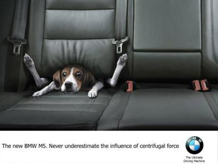 Dog Under Seat Funny BMW Car Commercial