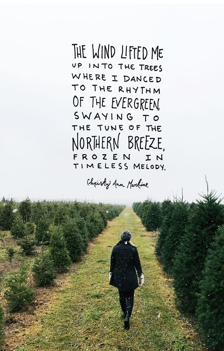 A Winter Quote this Monday to help you welcome winter   The Fresh Exchange