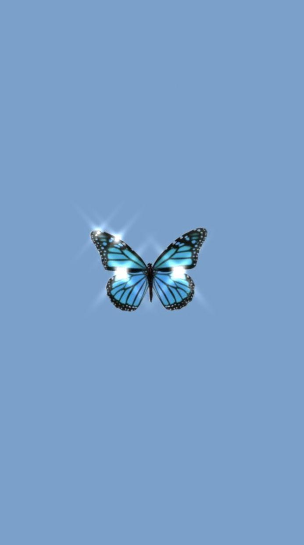 Blue butterfly 🦋 in 2020   Aesthetic iphone wallpaper ...