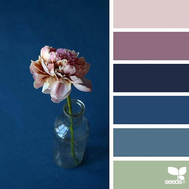 today's inspiration image for { color flora } is by @thediaryofdi ... thank you, Dilara, for sharing your gorgeous photo in #SeedsColor !