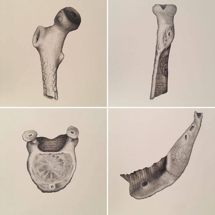 Whistle Bones Art by Anna Campbell Art
