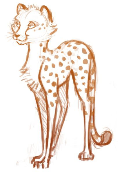 Cheetah Sketch FanArtDrawingSketchingDeviantART Pinterest
