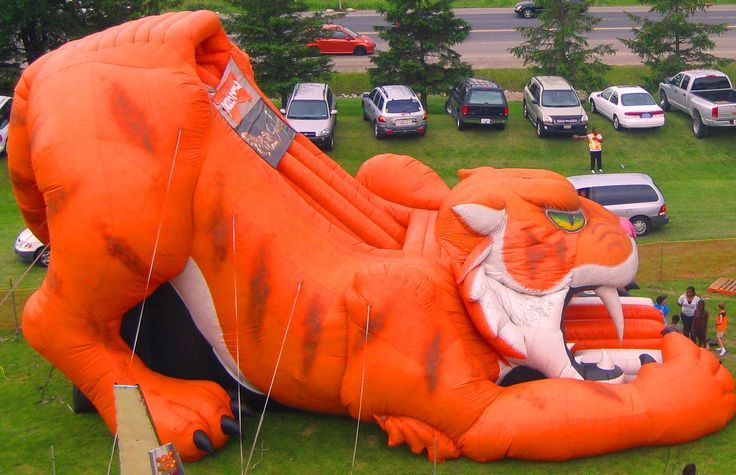 You'll want to watch out for our kitty's 4 foot teeth when you try to tame him. This 24' high Sabre Tooth Tiger has come back from extinction to offer you a roaring ride through time! As you climb into his mouth, you will be the one to purr as you fly down the slick slide and land back on the tiger's tongue! http://partyprofessionals.com/new-for-2013-party-rentals-az/saber-tooth-tiger-slide/