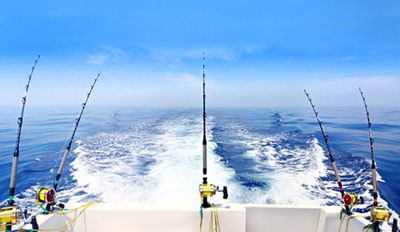 deep sea fishing gear - Google Search