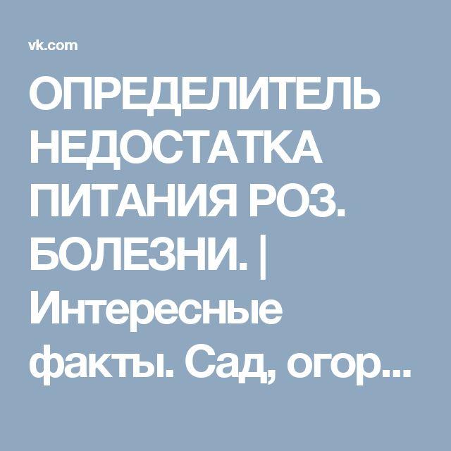 ОПРЕДЕЛИТЕЛЬ НЕДОСТАТКА ПИТАНИЯ РОЗ. БОЛЕЗНИ. | Интересные факты. Сад, огород, дача. | ВКонтакте