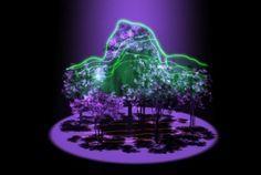 Misión GEDI permitirá disponer de imágenes en 3D de los bosques para conocer mejor su papel en el ciclo del carbono | Mercados de Medio Ambiente