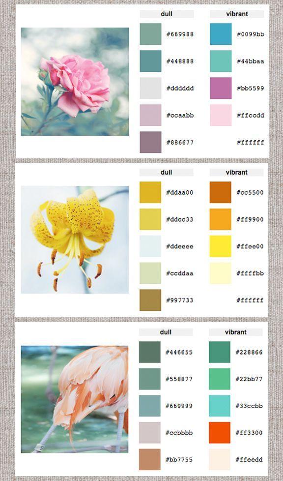 Web Help: Color Palette Generator - Home - Creature ...