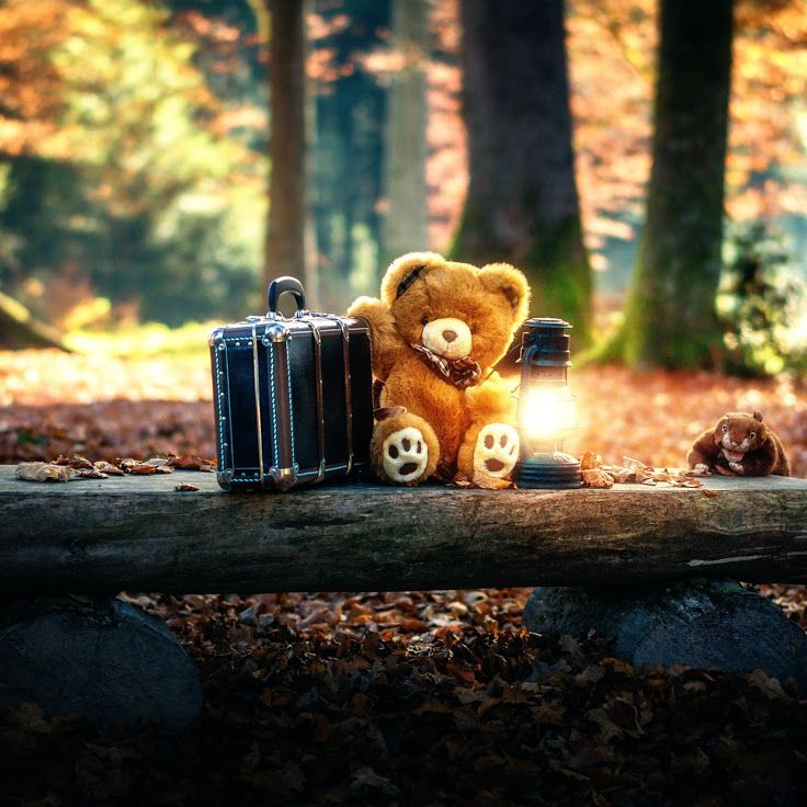 Download The Hd Wallpaper Version Here Https M1 Kappboom Com Gallery L P 192957 Don T Have The Kappboom App In 2021 Teddy Bear Wallpaper Teddy Bear Bear Wallpaper Cute teddy bear wallpapers for android